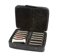"""Hurricane Harps, """"Hot House Blues"""" Harmonica Set, 12 Keys with Deluxe Zippered Case by Hurricane Harps. $39.99. Hurricane Harps - """"Hot House Blues"""" harmonicas are great harmonicas designed to get players started with high quality harps at a reasonable price.  They feature solid brass reedplates, ABS combs and sturdy chrome plated cover plates.  They play and feel like other brands costing twice the price.  Pick up one or a whole set and see what we mean.  Also availabl..."""
