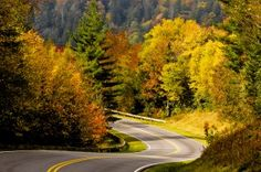 Top 5 Places to See on the Way to Clingmans Dome in the Smoky Mountains http://www.visitmysmokies.com/blog/smoky-mountains/revealed-5-secret-places-see-clingmans-dome-in-the-smoky-mountains/