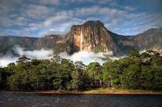 La plus haute cascade du monde se trouve au Venezuela. 979 mètres de haut en bas, les chutes Salto del Angel, ou Saut de l'Ange