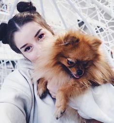 sylwia lipka (@sylwialipka_music) • Zdjęcia i filmy na Instagramie My Sunshine, Husky, Dogs, Animals, Stars, Instagram, Musica, Animais, Animales