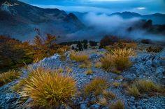 Dimineti in Crovuri by Bogdan D Photographer - Photo 179730575 / Mountains, Nature, Dan, Landscapes, Photography, Travel, Paisajes, Naturaleza, Scenery