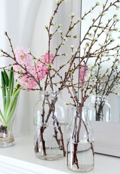 Easy Spring Project - Forcing Branches to Bloom Indoors | Satori Design for Living