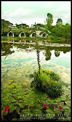 zamboanga city ecozone Zamboanga City, Subic Bay, Boat House, Philippines Travel, Going Home, Cyprus, Manila, Sri Lanka, Islands