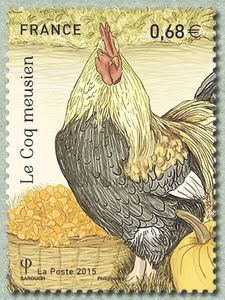 The Meuse cock