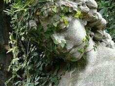 Imagen de plants, green, and statue