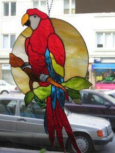 Parrot                                                       …