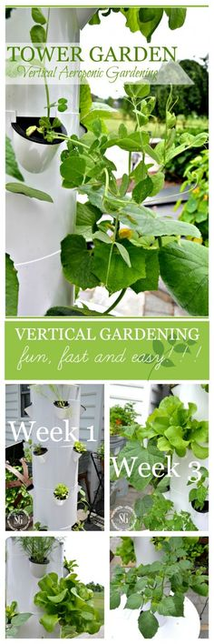 TOWER GARDEN This is such a fun and fast way to grow flowers, fruits and veggies even if you don't have a green thumb