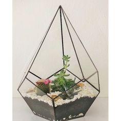 Piramit Teraryum
