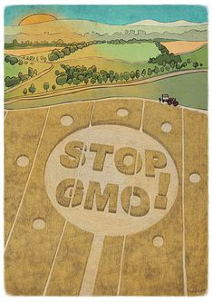 NO GMO's  - NO MONSANTO. GMOs stop and damage the reproductive system and more! #monsanto #gmo #geneticallymodified