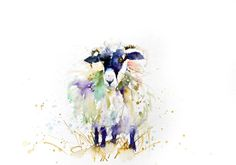 LIMITED edition print of   SHEEP 1455 wall art home decor