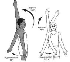 Movements - Shoulder Complex