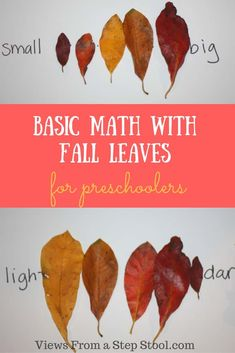 These 3 activities are fun ways to work on basic preschool math with fall leaves! Included is color and size sequencing and counting practice! Fall Activities For Toddlers, Activities For 1 Year Olds, Math Activities, Family Activities, Harvest Activities, Thanksgiving Activities, Educational Activities, Preschool Math, Preschool Fall Theme