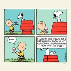 #thepeanuts #pnts #schulz #snoopy #charliebrown