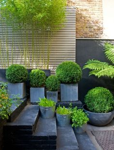 Sleek and timeless containers with simple boxwoods make a year round impact. Get these in fiberglass or fibercast at Wilshire Garden Market. #pots #gardening #WilshireGardenMarket