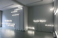 The Wake (a Neon Art Installation Interpretation of James Joyce) / by Joseph Kosuth http://mrspals.com/?product_tag=flags