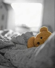 "Teddy Bear in Bed | yellow color ""splash"""