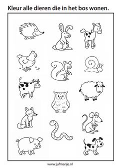 Dieren in het bos, animals of the forest Speech Language Therapy, Speech Therapy, Animal Coloring Pages, Coloring Sheets, Stippling Art, Forest Theme, Tangle Patterns, Kids Education, Pre School