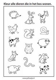 Kleurplaten Herfstdieren.30 Beste Afbeeldingen Van Herfst Preschool Day Care En Montessori