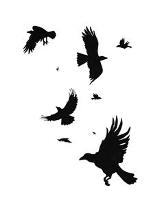 I've always loved how crows in flight look against the sky. Done with Stabilo and Copic black inks. I have a vector ver. A Murder of Crows Black Bird Tattoo, Black Tattoos, Crow Art, Bird Art, Cool Tattoos For Guys, Cute Tattoos, Crows Drawing, Raven Totem, Bird Stencil