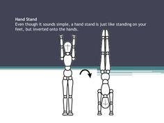 The Handstand. Gymnastics.