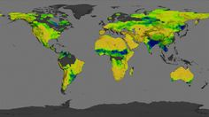 How wet is Earth's soil? NASA's Aquarius Returns Global Maps of Soil Moisture Carbon Sequestration, Global Map, Global Citizenship, Primary Science, Nasa Images, Remote Sensing, Weather And Climate, Image Of The Day, Earth Science
