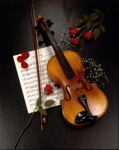 A gorgeous violin, beautiful red roses, and sheet music background. Sound Of Music, Music Is Life, Musica Celestial, Color Splash Photo, Violin Music, Music Music, Sheet Music, Rose Music, Violin Art