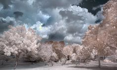 Cloudy Day by ~RoieG on deviantART