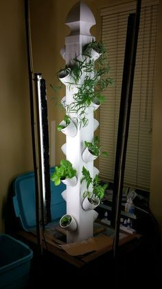 Aquaponics Vertical Garden