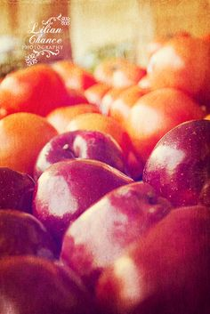 Cyber Monday Black Friday SALE Fruit Stand 8x12 by KLCPhotography, $15.00