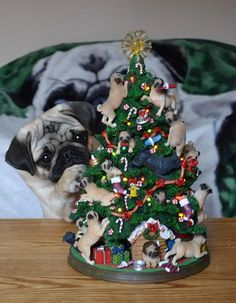 Need this tree -Pug Puppy Fascinated By Pug Christmas Tree
