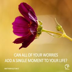 Can all your worries add a single moment to your life? - Matthew 6:27 #NLT #BIble