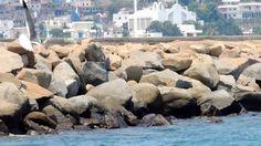 Playa Las brisas en el municipio de Manzanillo Colima México