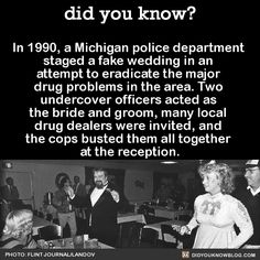"""As an inside joke, the officers decided to have the cake decorated in police-blue ribbons and sugared bees (for a """"sting"""").  The band, led by a city police officer, announced themselves as a weed-loving group named S.P.O.C, which stood for 'Somebody Protect Our Crops.' In actuality, it was just COPS spelled backwards"""