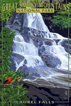 Laurel Falls - Great Smoky Mountains National Park, TN - Lantern Press Poster