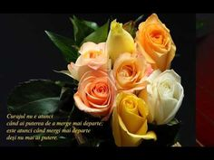 Trandafiri galbeni si cuvinte intelepte (Yellow roses and wise words) Wallpaper Images Hd, Flower Wallpaper, Wallpaper Backgrounds, Wallpapers, Hd Rose, Rose Images, Landscape Wallpaper, Flowers Nature, Flower Pictures
