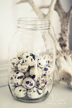 ♕ I love little bits of nature in a cottage, like these speckled eggs in a jar