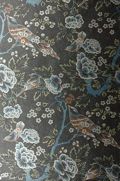 Anna French Wallpaper and Fabric - Wild Flora - Songbirds - Silver / Black
