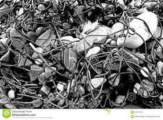 Photo about A black and white image of a natural sculpture made by the river twisting wire debris around piles of stone. Image of wire, made, around - 91010740 White Image, Sculpture, Stock Photos, Black And White, Stone, Nature, Art, Art Background, Rock