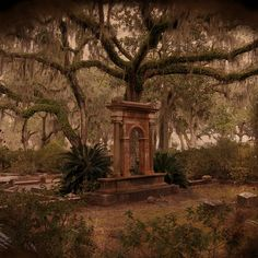 As creepy as this sounds this cemetery is a truly beautiful place. This is Bonaventure Cemetery, Savannah GA Cemetery Monuments, Cemetery Statues, Cemetery Headstones, Old Cemeteries, Cemetery Art, Cemetery Angels, Graveyards, Haunted Places, Abandoned Places