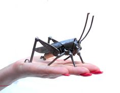 Metal sculpture grasshopper. Insect figurine Welded insect.