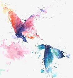 Tinta mariposa, Dibujo De Mariposa, Nabi, Decoracion De Mariposa Imagen PNG