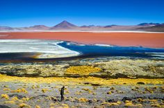 The Laguna Colorada offers a painter's palette of color in this National Geographic Your Shot Photo of the Day.