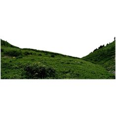 mountain ❤ liked on Polyvore featuring backgrounds, landscape, grass, tubes, art sets, fillers and scenery