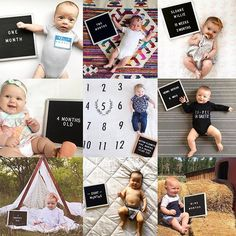 The most versatile and minimalist decoration for your home - felt letter board. Totally in love with and all of the fun boards they create! Inspirational and funny letter board quotes. The Letter Tribe Monthly Baby Photos, Monthly Pictures, Baby Boy Photos, Newborn Pictures, Baby Pictures, Infant Photos, Family Pictures, One Month Old Baby, Baby Month By Month
