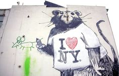 Why I'd Rather Live with Rats Than Look for a New Apartment in NYC