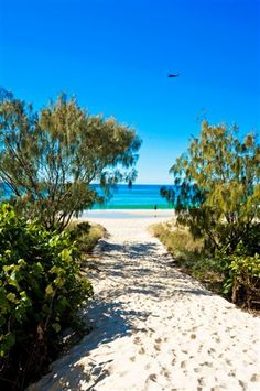 Every apartment is located on the absolute beachfront. Enjoy private and direct beach access. #Bilinga #GoldCoast www.OzeHols.com.au/85