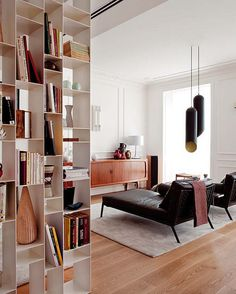 Home Libraries. Shelves as room dividers
