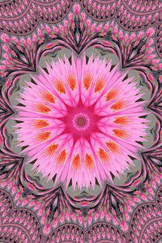 Flower mandala - Please consider enjoying some flavorful Peruvian Chocolate this… Mandala Art, Flower Mandala, Mandala Design, Psychedelic Art, Psychedelic Pattern, Sacred Geometry, Geometry Art, Geometry Tattoo, Fractal Art