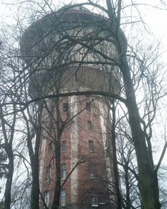 #sky  #tower  #watertower  #tree  #trees  #view  viewpoint  #niceview #Latvia  #Latvija  #Riga  #Rīga  #ciekurkalns  #čiekurkalns