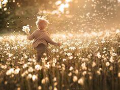 """""""Mas os que buscam abrigo em ti ficarão contentes e sempre cantarão de alegria porque tu os defendes. Os que te amam encontram a felicidade em ti. Pois tu, ó Senhor Deus, abençoas os que te obedecem, a tua bondade os protege como um escudo."""" (Salmos 5:11-12)"""